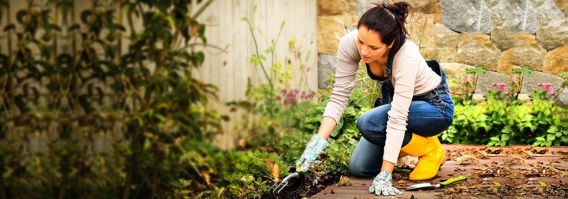 Качествено озеленяване на градини