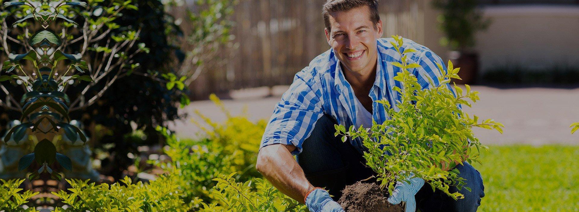 Озеленяване на площи