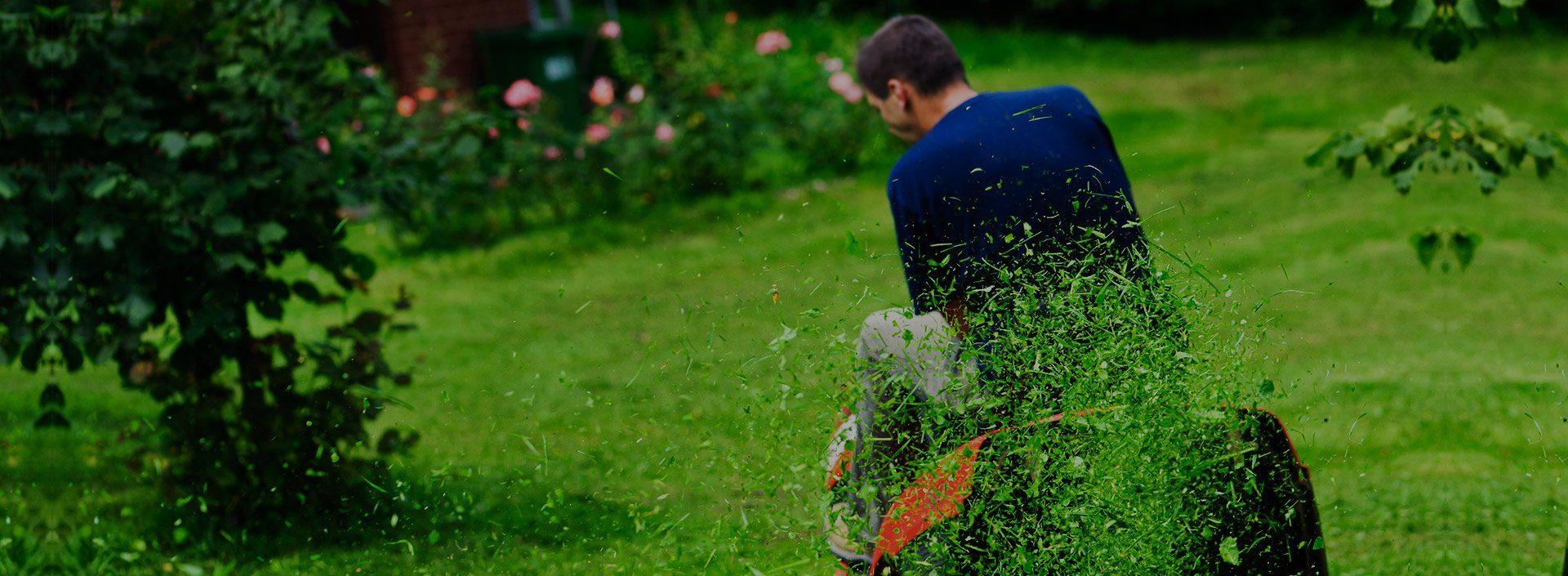 Професионална поддръжка на тревни площи