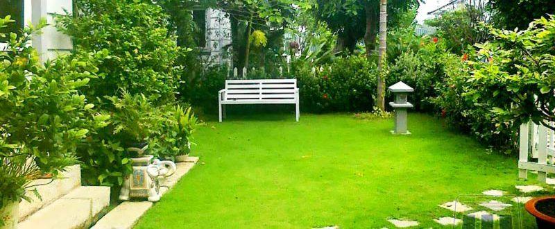 Красив двор след озеленяване