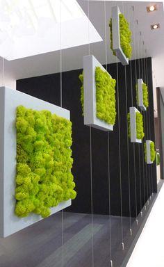 Вертикално озеленяване София цени