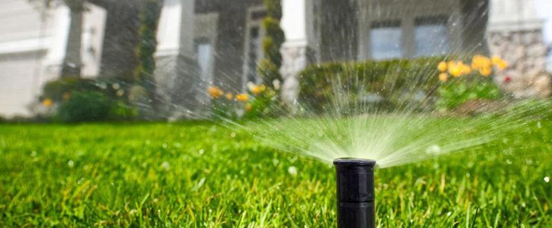 Почвата и поливането на зелени площи