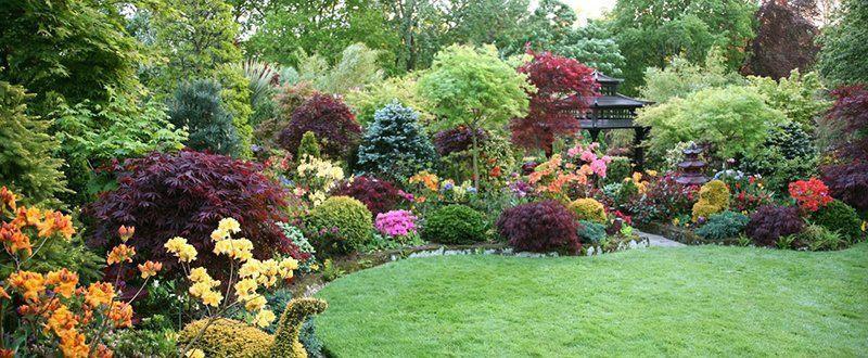 натурални добавки за градина